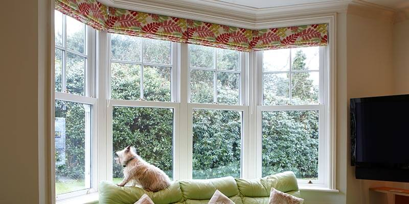 Energy efficient windows win dor for Energy efficient bay windows