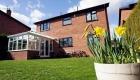 Edwardian conservatory daffodils